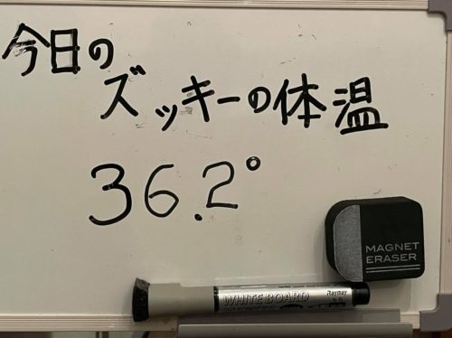 210422-%e4%bb%8a%e6%97%a5%e3%81%ae%e4%bd%93%e6%b8%a9